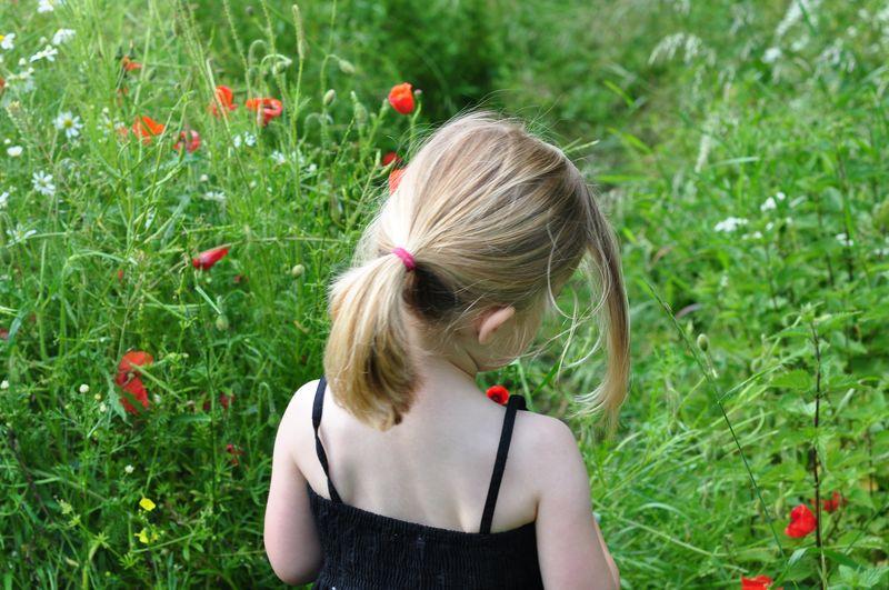 Walking in poppy fields