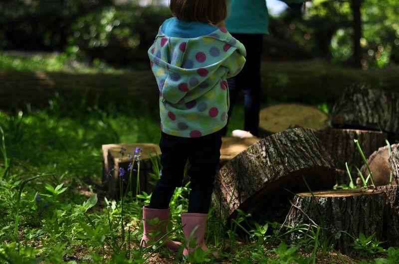 Climbing logs at Kingston Lacy